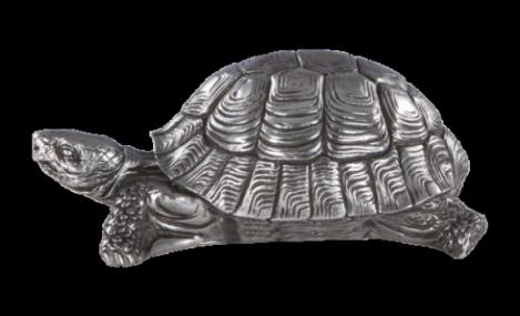 Изображение - Черепаха 2